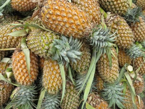 Ananass1